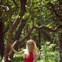 Лесная балерина :: Ксения Стадникова