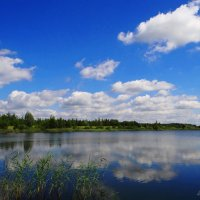 На озере.. :: Антонина Гугаева