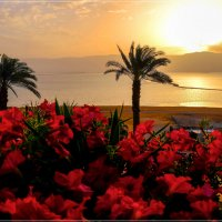 Sunrise at the Dead Sea :: Alexander Hersonski