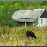 домик в  горах. :: Ivana