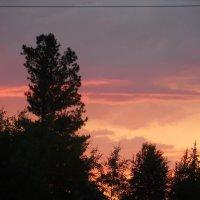 Ушло солнце за горизонт, оставив отсвет на облаках :: Наталья Пендюк Пендюк