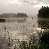 Утро на озере :: Владимир Брагилевский