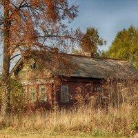 Российские деревни :: Марина