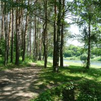Климовский пейзаж :: Владимир Холодницкий