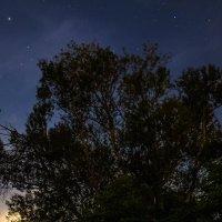 ночные прогулки :: Cain Amberskii
