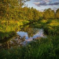 Вечер,река,июнь 2016 :: Андрей Дворников