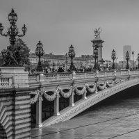 Наводнение в Париже :: Анастасия Елкина