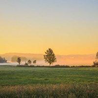Утренний туман :: Waldemar .