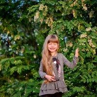 Акация в цвету :: Катерина Терновая