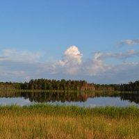 Зеркальное озеро :: Весёлый Енот