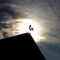 Золотой петушок :: Андрей Скорняков