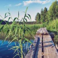 Старый деревянный мост :: Геннадий Клевцов