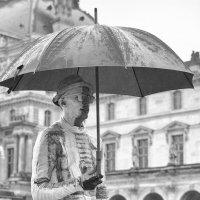 под зонтом :: Vladimir Zhavoronkov