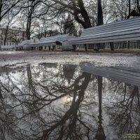 Весна :: Valeriy Piterskiy