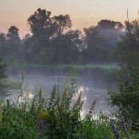 Утро на реке :: ALEXANDR L