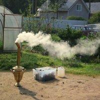 Чай с дымком. :: Валентина Жукова