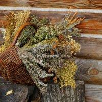 Корзина с пряными травами :: Ирина Шурлапова