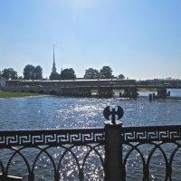 Петропавловская крепость с Иоанновского моста :: Елена