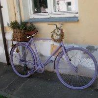 Это я почему раньше злой был? Потому что у меня велосипеда не было (с)). :: Галина Бобкина