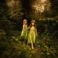 таинственный лес :: Светлана Мизик