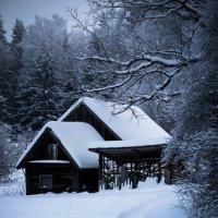 дом возле леса :: Олег