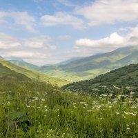 Северная Осетия. :: ФотоЛюбка *