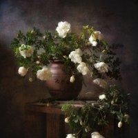 дикие розы... :: Natali-C C