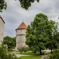 Старый Таллин :: Евгения К