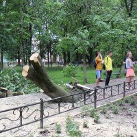 А просто летний дождь прошел... :: Елена Миронова