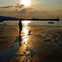 Золотое утро или дама с собачкой..... :: Александр Бойко