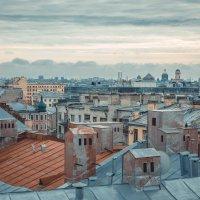 Крыши Петербурга :: Михаил Б
