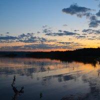 Летний вечер. :: Валерий Медведев