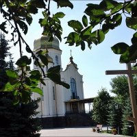 Зелёное лето :: Нина Корешкова