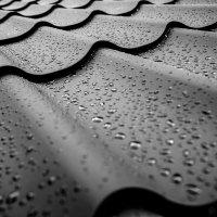 После дождя :: Максим Камышлов