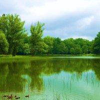 Озеро Лесное перед дождём :: Маргарита Батырева