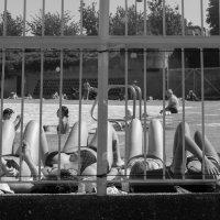 солнечные ванны :: Sofia Rakitskaia