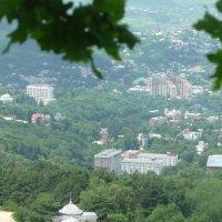 Кавказ подо мною :: Вера Музафарова