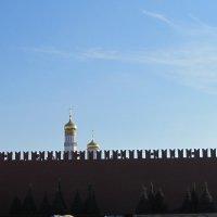 Кремлевская стена :: Маера Урусова