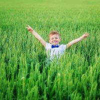 Пшеница цвета изумруд :: Юлия Роденко