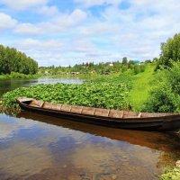 Река Ухта :: Галина Новинская