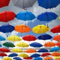 Желтый,красный,голубой....Выбирай себе любой!!! :: Марина Харченкова