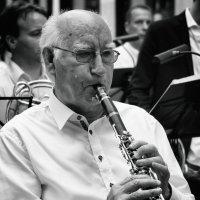 музыкант :: Vladimir Zhavoronkov