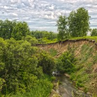 Крутой берег реки Почитанки :: Cергей Александров