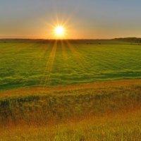 лето,жара,закат солнца,кайф!!! :: Алексей -