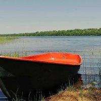 Озеро Долгое :: Владимир Гилясев