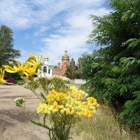 Божественный букет полевых цветов... :: Алекс Аро Аро