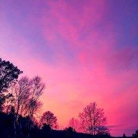 Розовый закат :: Евгения Калугина