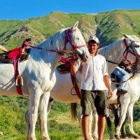 Эх ....вы кони ,мои кони...белогривые!!! :: Людмила Богданова (Скачко)