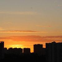 утро :: Наталья Нарсеева