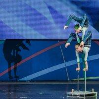 Цирковое искусство :: Lovec Photo